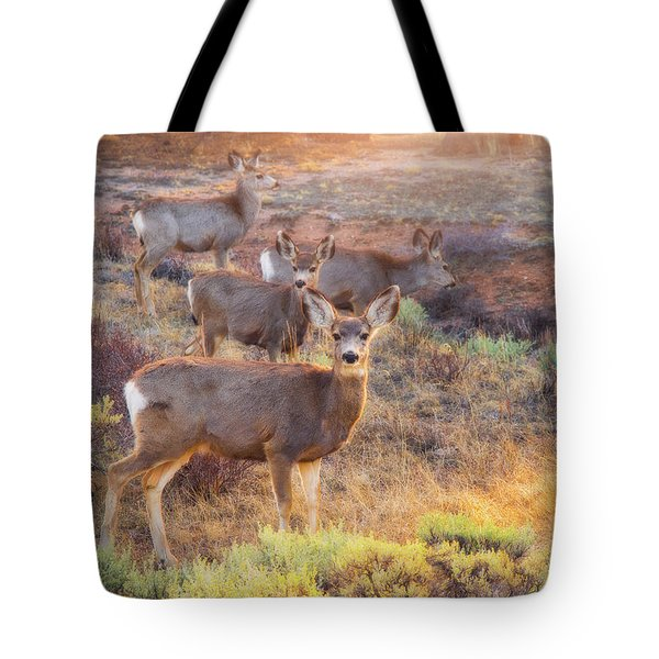 Tote Bag featuring the photograph Deer In The Sunlight by Darren White