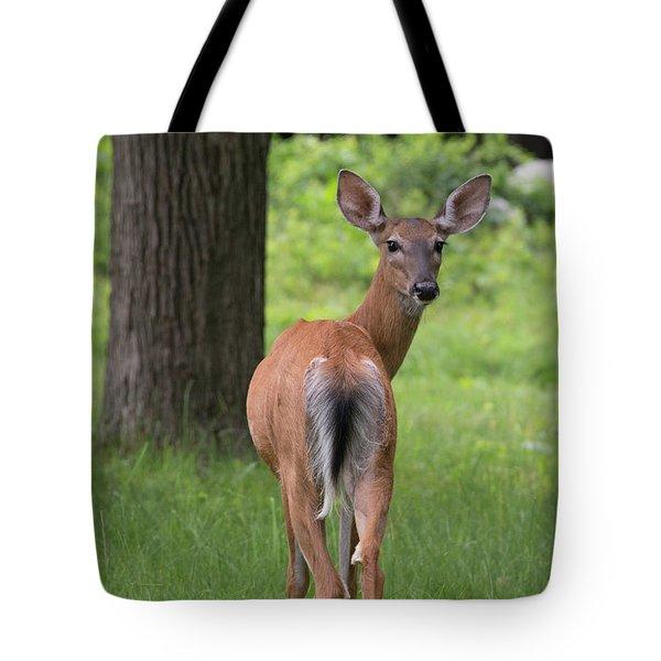 Deer Looking Back Tote Bag