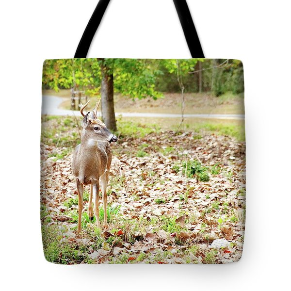 Deer Me, Are You In My Space? Tote Bag