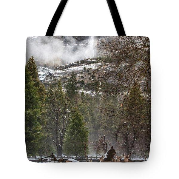 Deer Of Winter Tote Bag