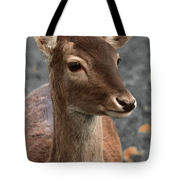 Deer Portrait Tote Bag