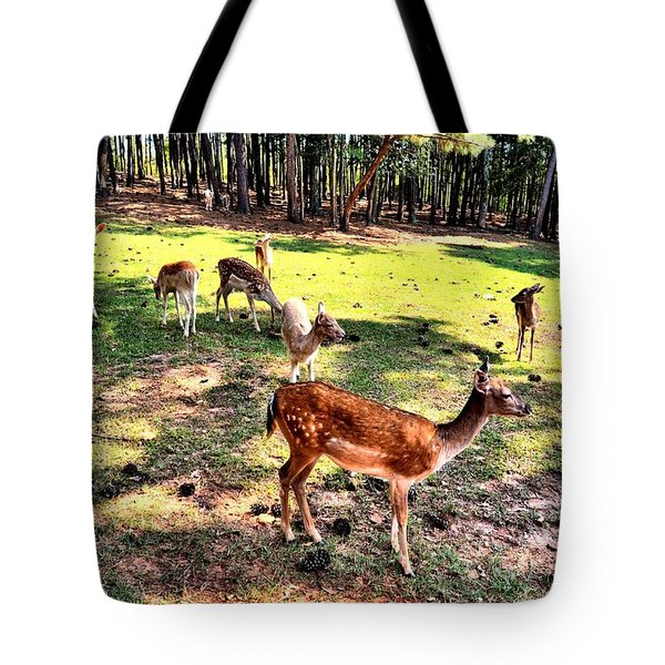 Deerfield Tote Bag