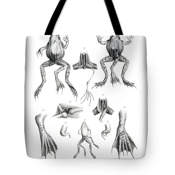 Deformed Frogs Tote Bag