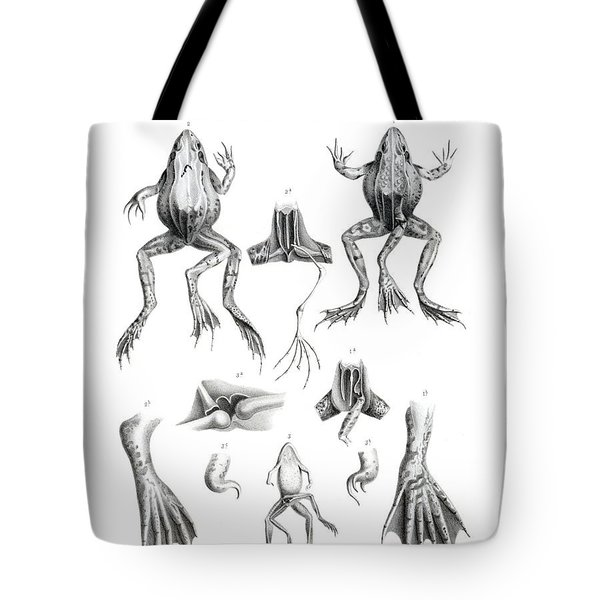 Deformed Frogs Tote Bag