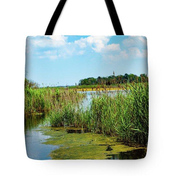 Delaware Marsh Tote Bag