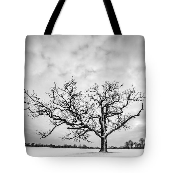 Delaware Park Winter Oak Tote Bag by Chris Bordeleau