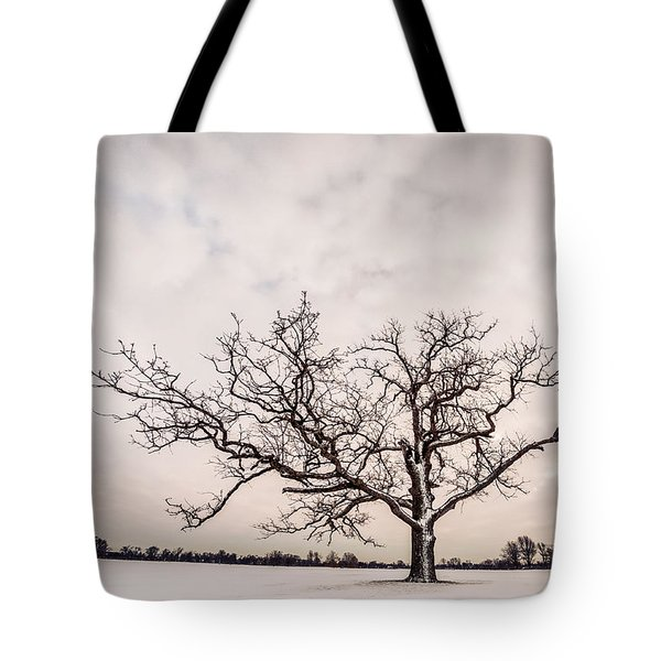Delaware Park Winter Oak - Color Tote Bag by Chris Bordeleau