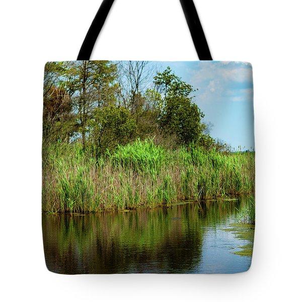 Delaware Waterway Tote Bag