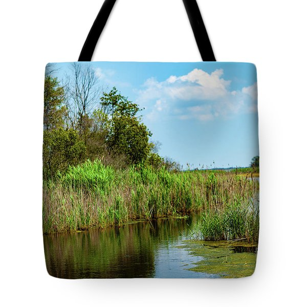 Delaware Wetlands Tote Bag