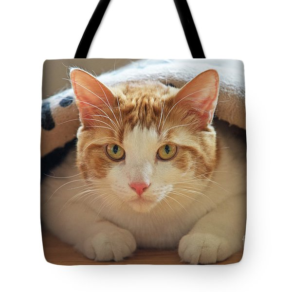 Tote Bag featuring the photograph Delectable Companion.. by Nina Stavlund