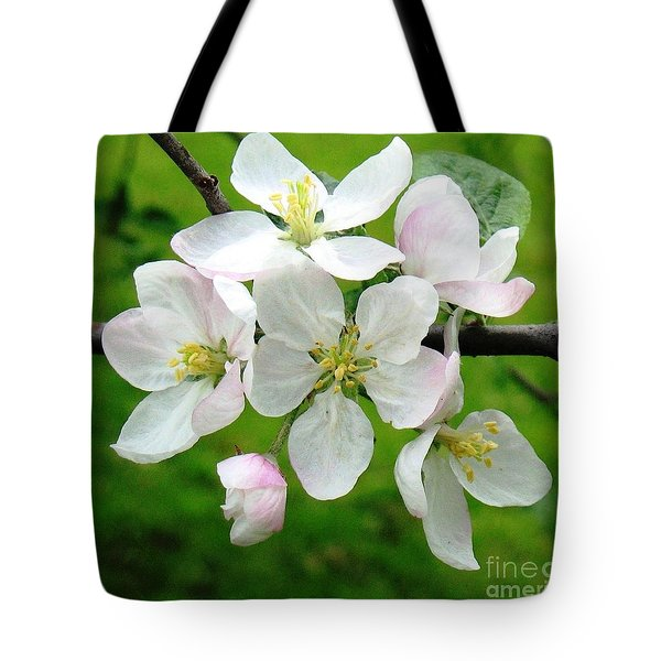 Delicate Apple Blossoms Tote Bag
