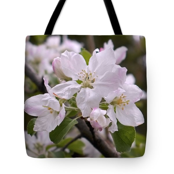 Delicate Apple Blossoms Tote Bag by Rona Black