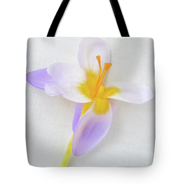 Tote Bag featuring the photograph Delicate Art Of Crocus by Terence Davis