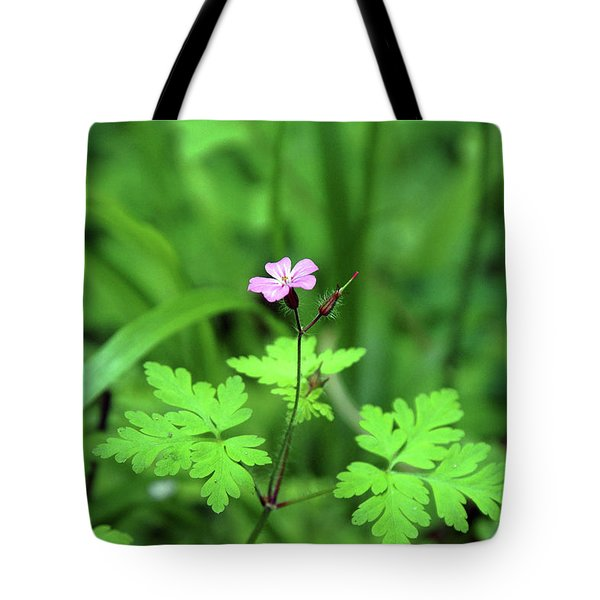 Tote Bag featuring the photograph Delicate Beauty by Ben Upham III