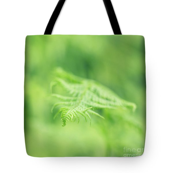 Delicate Fern - Hipster Photo Square Tote Bag