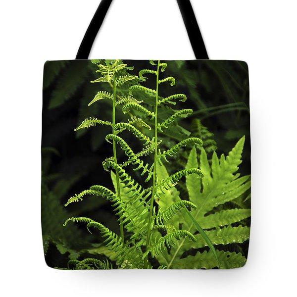 Delicate Fern Tote Bag