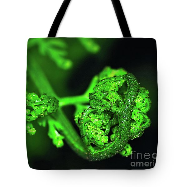 Delicate Fern Unfolding Tote Bag by Kaye Menner