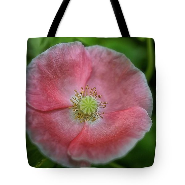 Tote Bag featuring the photograph Delicate In Pink by Beth Akerman