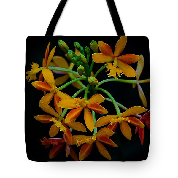 Delicate Orchid Display Tote Bag by Blair Wainman