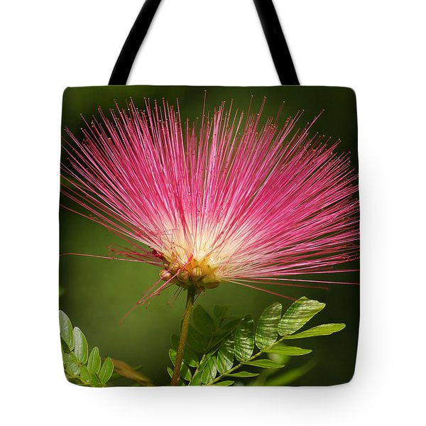 Delicate Pink Bloom Tote Bag