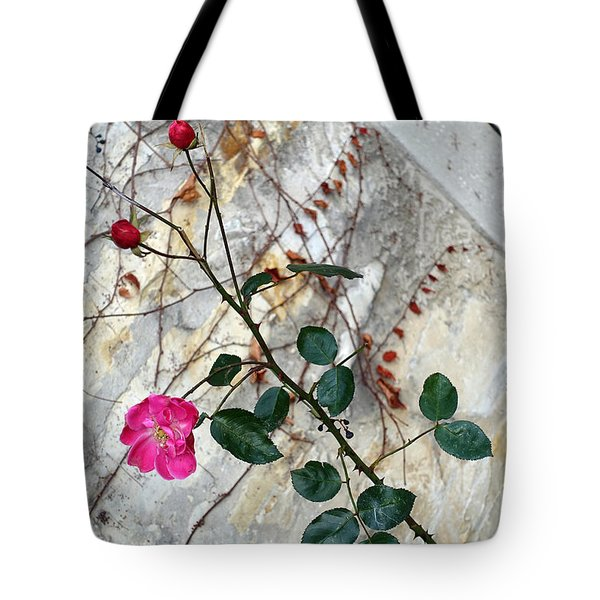 Delicate Rose In December Tote Bag