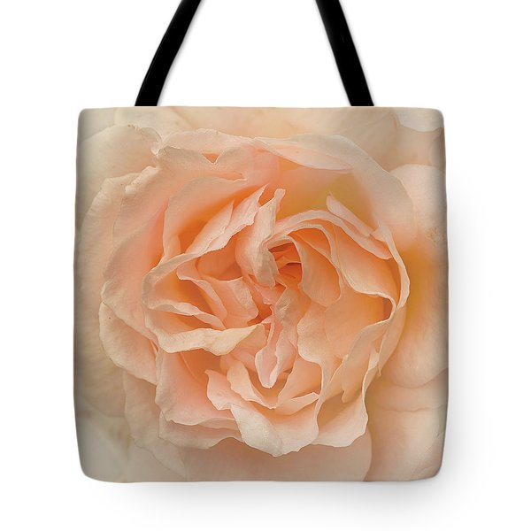 Delicate Rose Tote Bag by Jacqi Elmslie