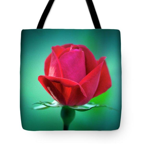 Delicate Rose Petals Tote Bag