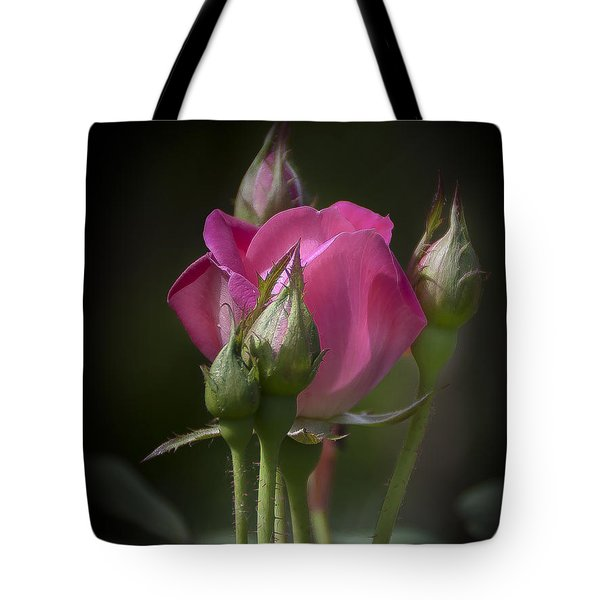 Delicate Rose With Buds Tote Bag