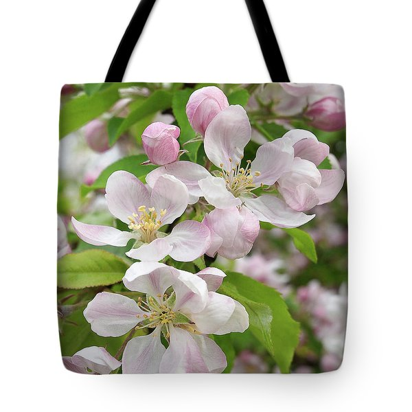 Delicate Soft Pink Apple Blossom Tote Bag by Gill Billington