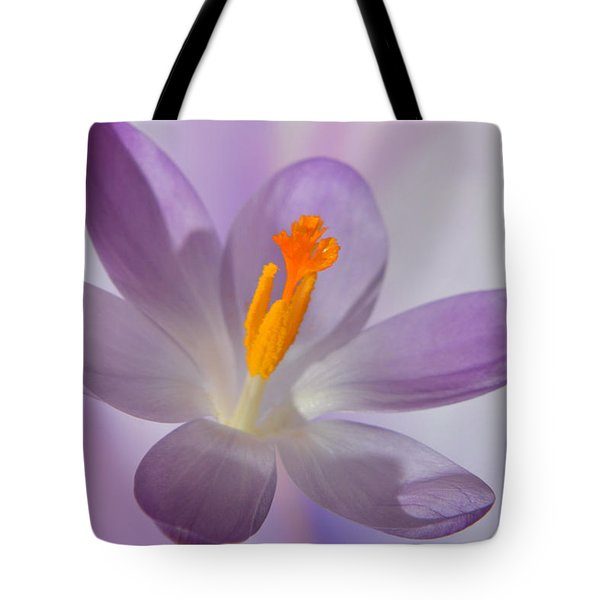 Delicate Spring Crocus. Tote Bag by Terence Davis