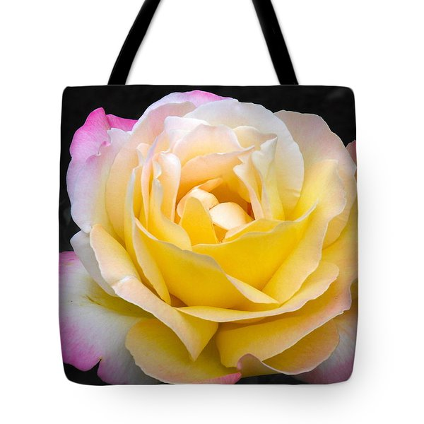 Delightful Blushing Rose  Tote Bag