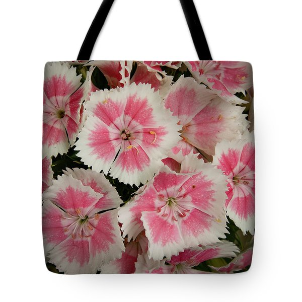 Tote Bag featuring the photograph Delightful Dianthus by Jean Noren