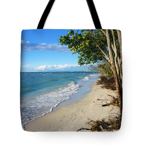 Delnor Wiggins Pass State Park Tote Bag by Robb Stan