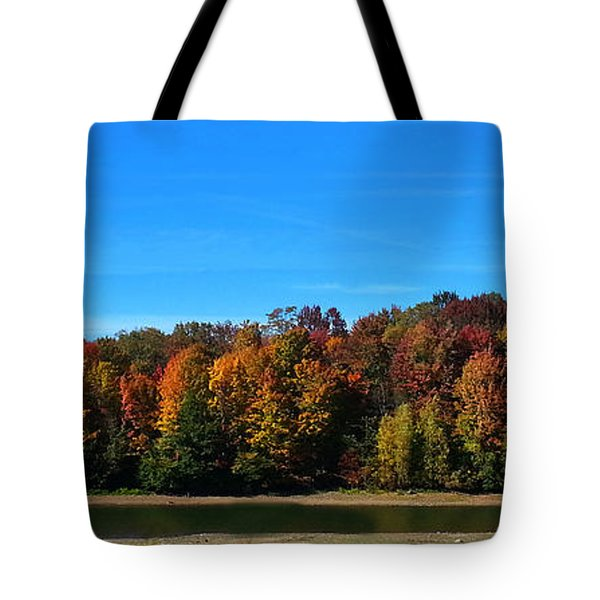 Delta Lake State Park Foliage Tote Bag by Diane E Berry