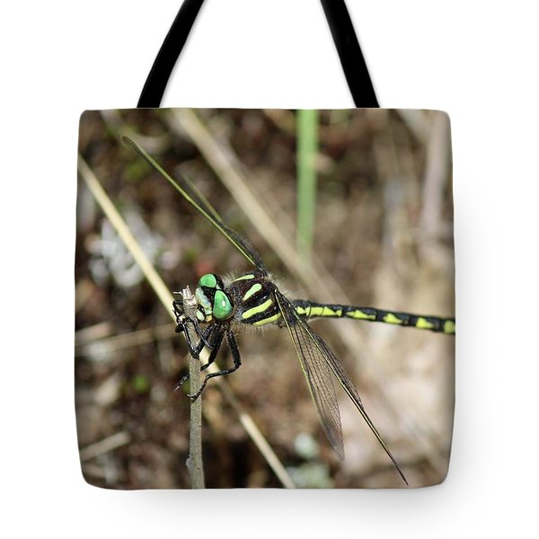 Delta-spotted Spiketail  Male Tote Bag
