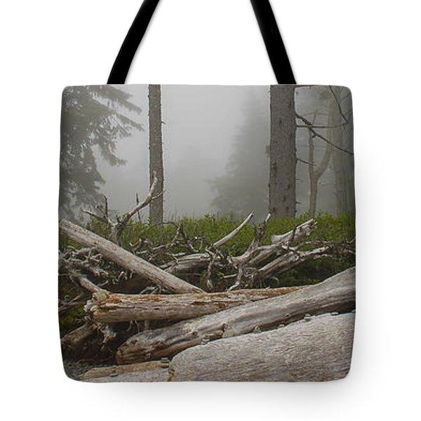 Ruby Beach In A Fog Tote Bag by Chuck Flewelling