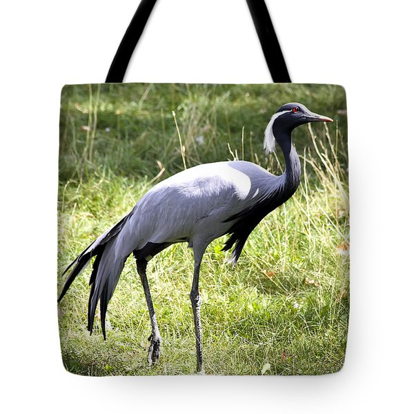 Demoiselle Crane Tote Bag by Teresa Zieba