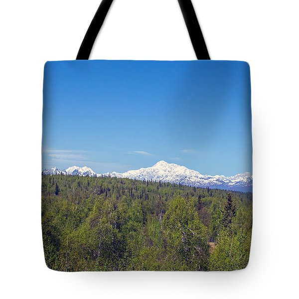Denali  Tote Bag by Allan Levin