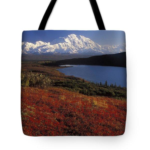 Denali Evening Tote Bag by Sandra Bronstein