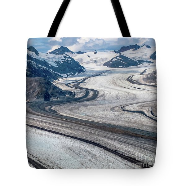Tote Bag featuring the photograph Denali National Park by Benny Marty
