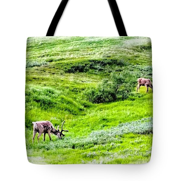 Denali National Park Caribou Tote Bag