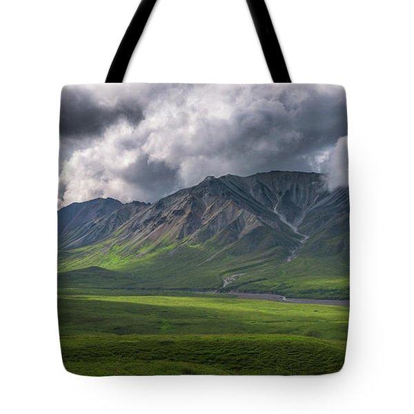 Denali National Park Panorama Tote Bag