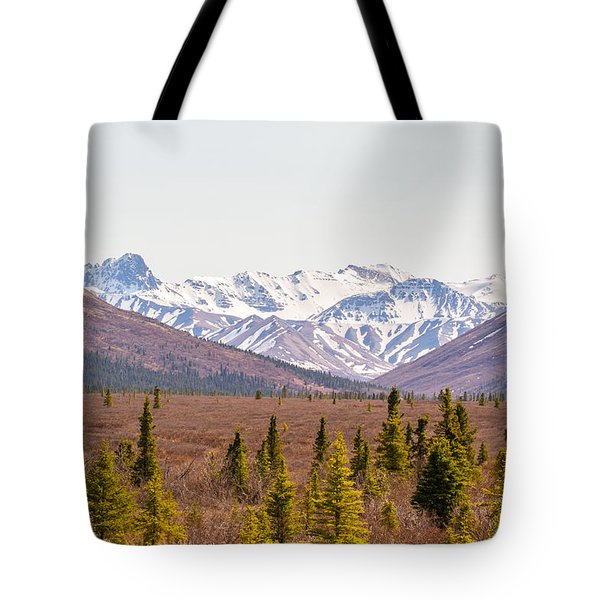 Denali Wilderness Beauty Tote Bag by Allan Levin