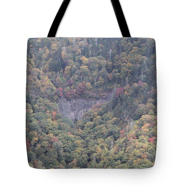 Dense Woods Tote Bag
