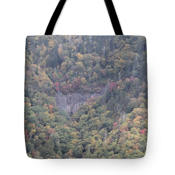 Dense Woods Tote Bag