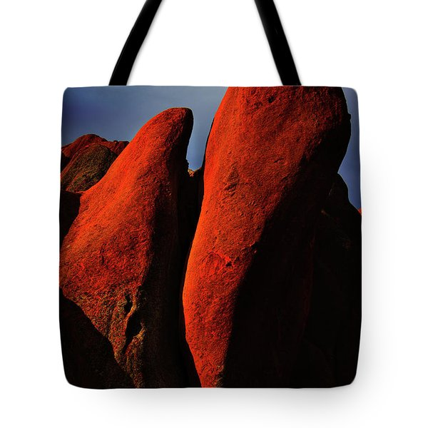 Tote Bag featuring the photograph Denver In Late Fall by Dennis Dame