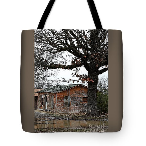 Derelict In Hope Tote Bag