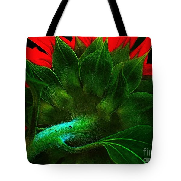 Tote Bag featuring the photograph Derriere by Elfriede Fulda