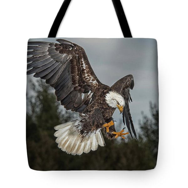 Descending Eagle Tote Bag