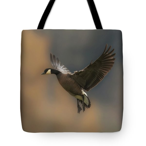 Tote Bag featuring the photograph Descending Goose by Angie Vogel